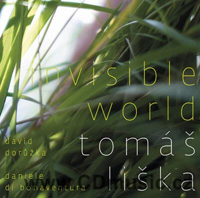 LIŠKA T. INVISIBLE WORLD / T.Liška acoustic bass, D.Dorůžka acoustic and electric guitars