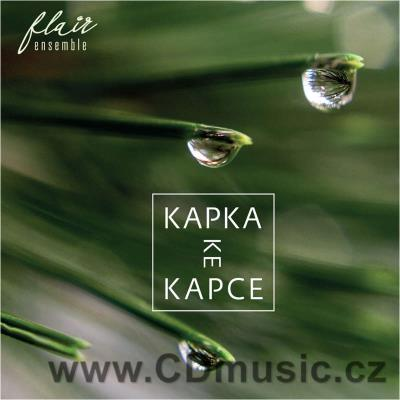 FLAIR ENSEMBLE - KAPKA KE KAPCE